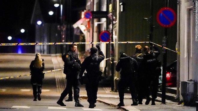 Na Uy: Rúng động vì 5 người bị bắn chết bằng cung tên - ảnh 2