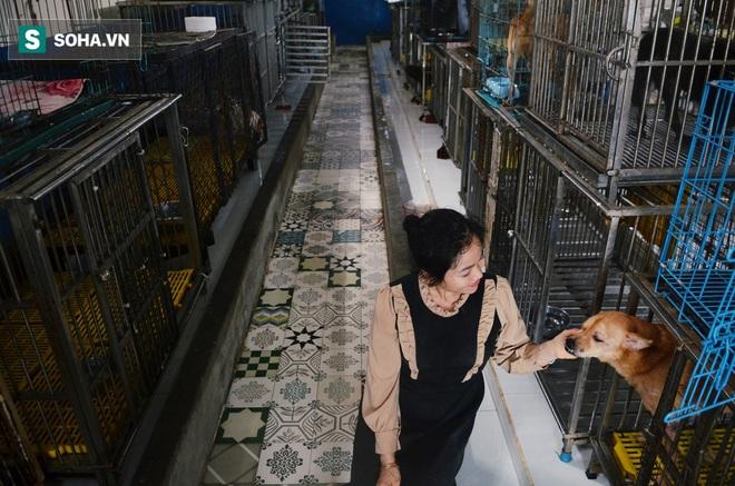 Cặp vợ chồng cưu mang 100 con chó, mèo bị chủ F0 bỏ rơi mùa dịch: Chúng tôi không sinh con để chu toàn cho tụi nhỏ - ảnh 13