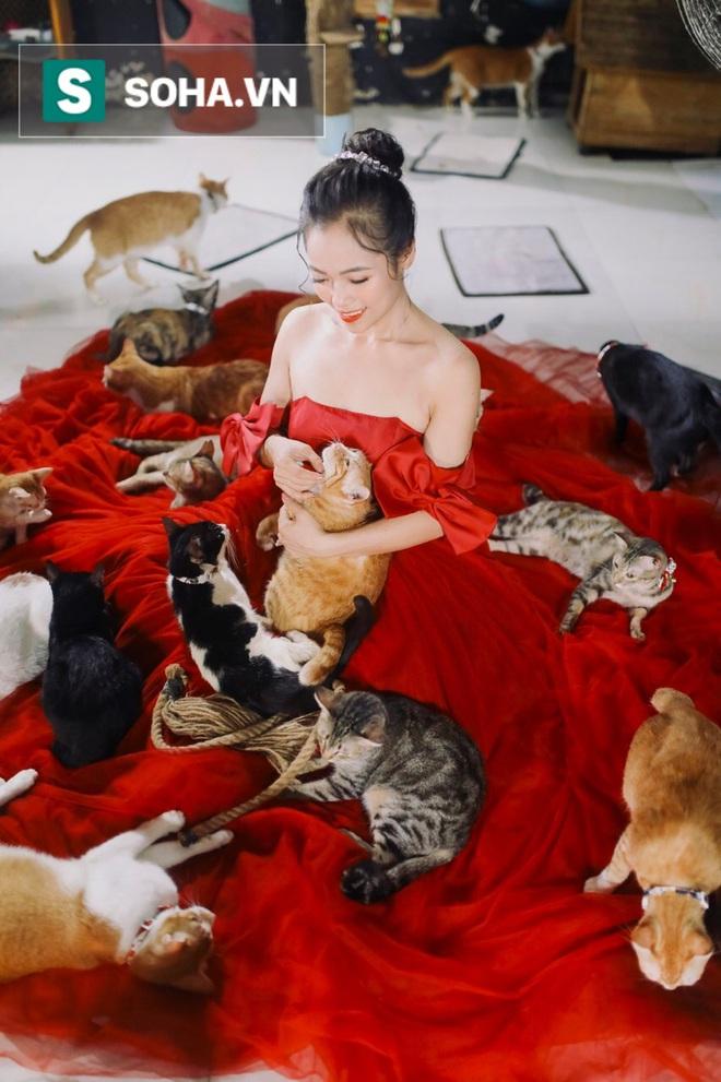 Cặp vợ chồng cưu mang 100 con chó, mèo bị chủ F0 bỏ rơi mùa dịch: Chúng tôi không sinh con để chu toàn cho tụi nhỏ - ảnh 16