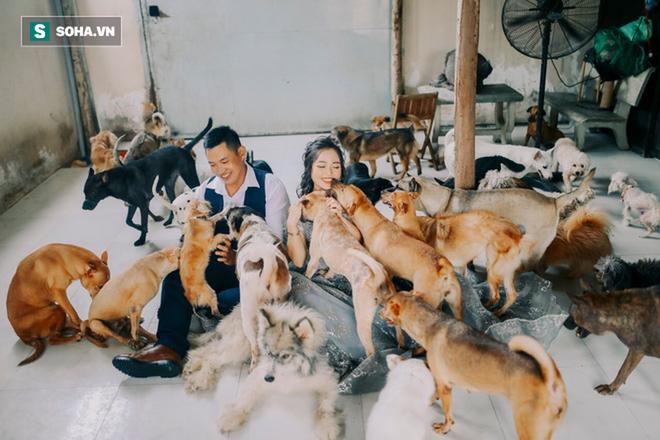 Cặp vợ chồng cưu mang 100 con chó, mèo bị chủ F0 bỏ rơi mùa dịch: Chúng tôi không sinh con để chu toàn cho tụi nhỏ - ảnh 4