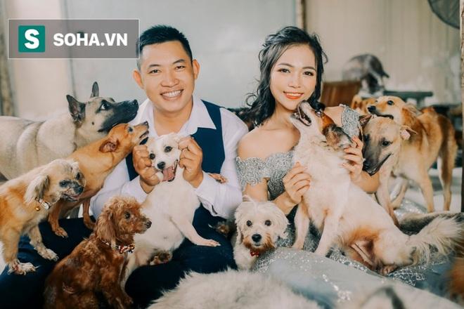 Cặp vợ chồng cưu mang 100 con chó, mèo bị chủ F0 bỏ rơi mùa dịch: Chúng tôi không sinh con để chu toàn cho tụi nhỏ - ảnh 5