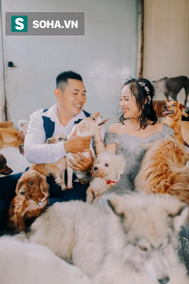 Cặp vợ chồng cưu mang 100 con chó, mèo bị chủ F0 bỏ rơi mùa dịch: Chúng tôi không sinh con để chu toàn cho tụi nhỏ - ảnh 6