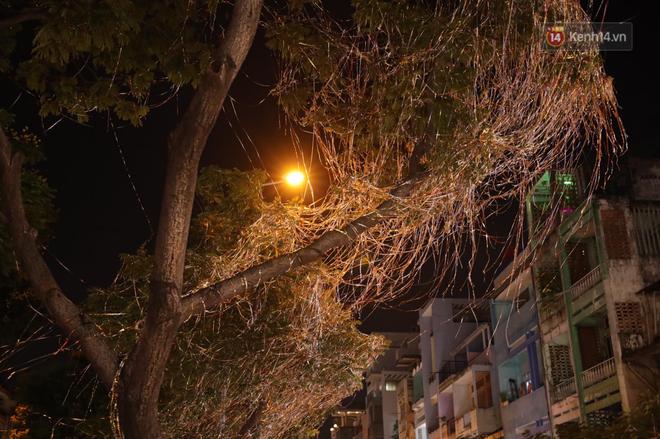 Pháo hoa rực sáng bầu trời Hà Nội, chúc mừng năm mới 2021 - Ảnh 11.