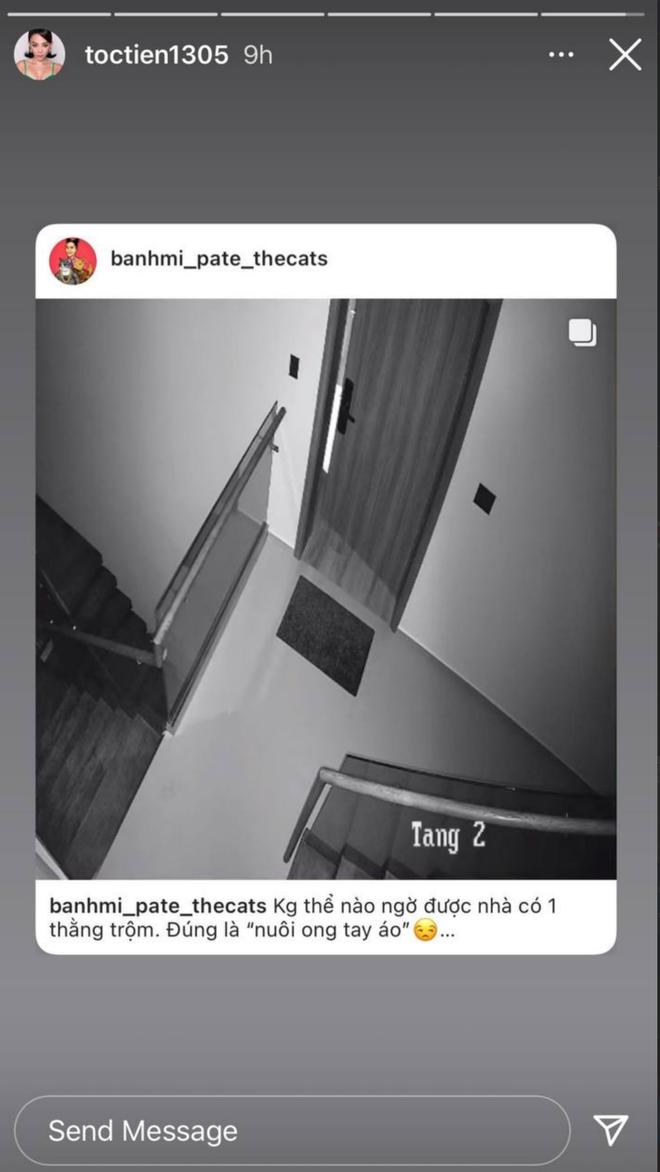 """Khuya mùng 4 Tết, Tóc Tiên hốt hoảng vì bị trộm viếng thăm biệt thự quận 2, còn khẳng định """"nuôi ong tay áo""""? - Ảnh 2."""