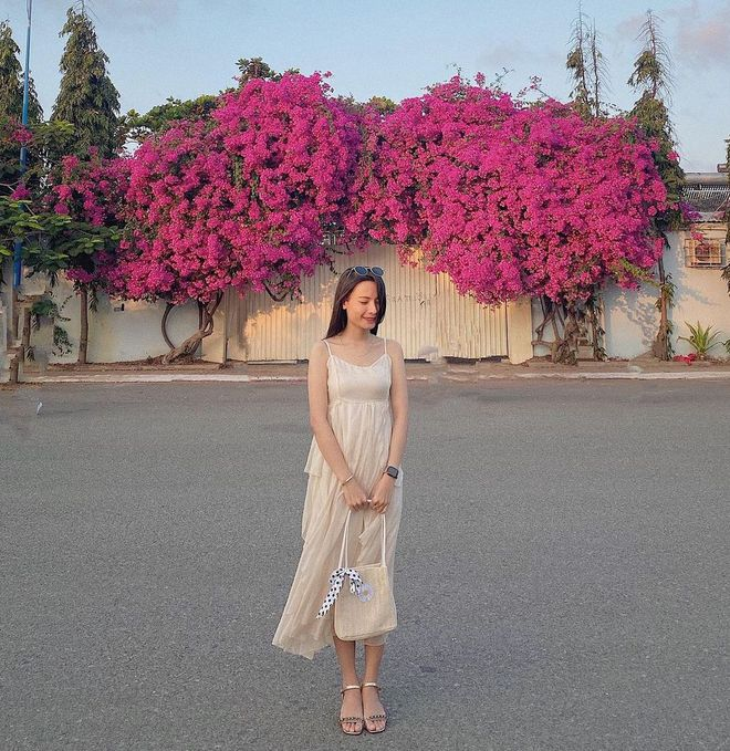"""Paper flower truss """"extreme"""" is causing a storm in Vung Tau because its blooming is so beautiful, people are racing to ask for addresses to check-in - Photo 3."""