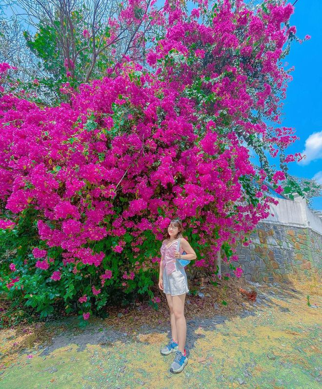 """Paper flower truss """"extreme"""" is causing a storm in Vung Tau because its blooming is so beautiful, people are racing to ask for addresses to check-in - Photo 12."""