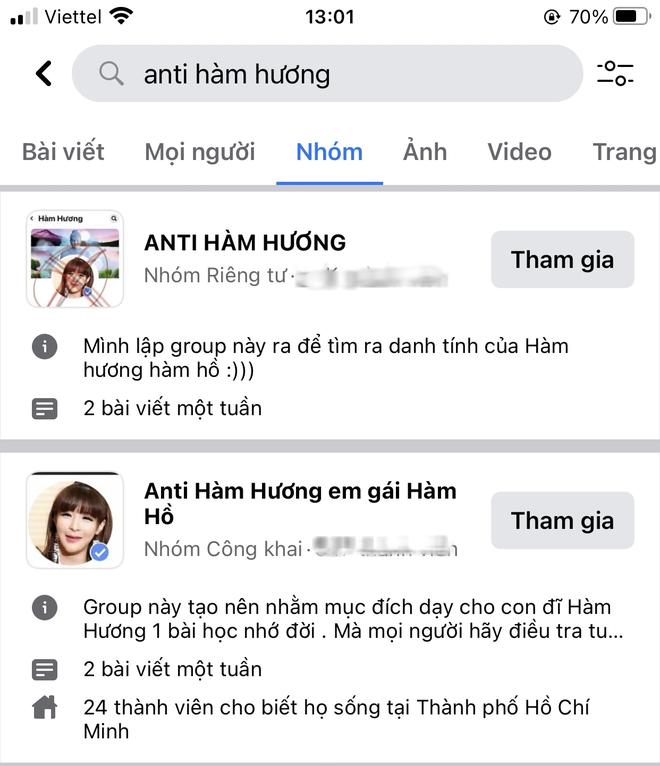 Xuất hiện hàng loạt group anti Hàm Hương - Thánh comment dạo nổi nhất mạng xã hội những ngày vừa qua - Ảnh 4.