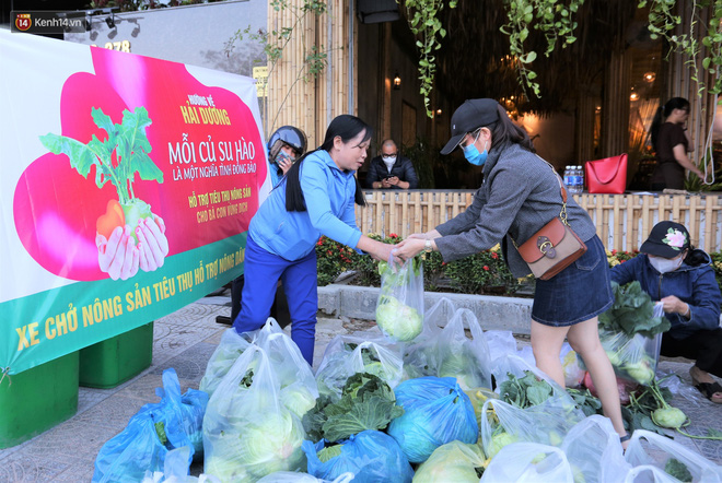 Ảnh: Người Đà Nẵng nườm nượp kéo nhau giải cứu nông sản cho nông dân Hải Dương - ảnh 2