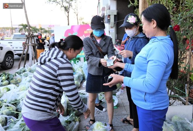 Ảnh: Người Đà Nẵng nườm nượp kéo nhau giải cứu nông sản cho nông dân Hải Dương - ảnh 12