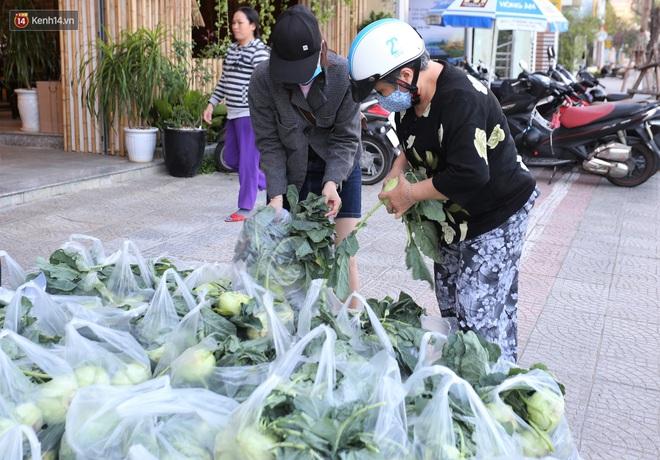 Ảnh: Người Đà Nẵng nườm nượp kéo nhau giải cứu nông sản cho nông dân Hải Dương - ảnh 1