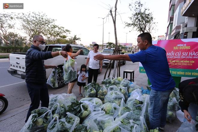 Ảnh: Người Đà Nẵng nườm nượp kéo nhau giải cứu nông sản cho nông dân Hải Dương - ảnh 5
