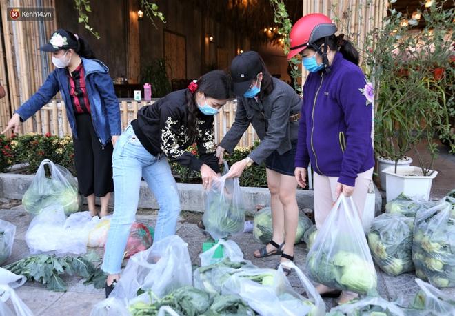 Ảnh: Người Đà Nẵng nườm nượp kéo nhau giải cứu nông sản cho nông dân Hải Dương - ảnh 6