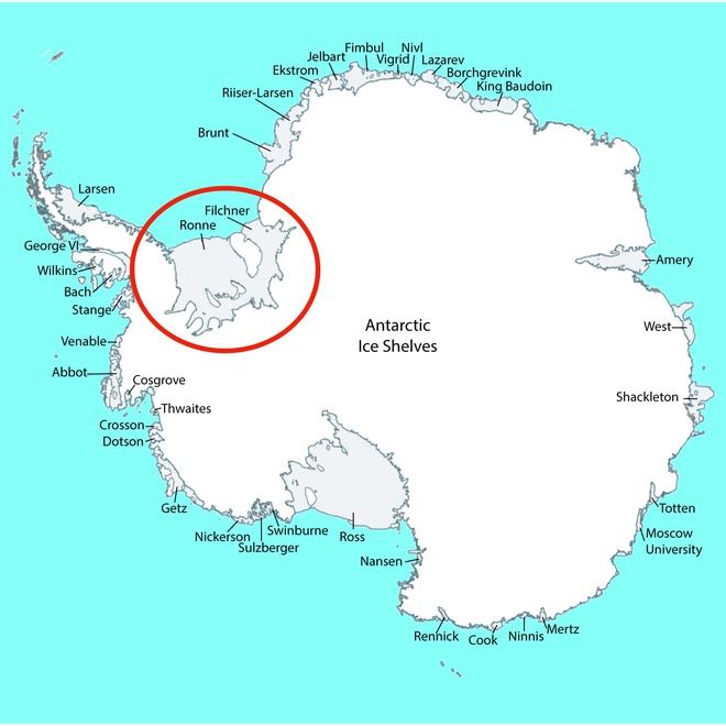 GoPro giúp các nhà khoa học tìm ra 12 loài động vật chưa từng được biết đến dưới lớp băng ở Nam Cực - ảnh 9