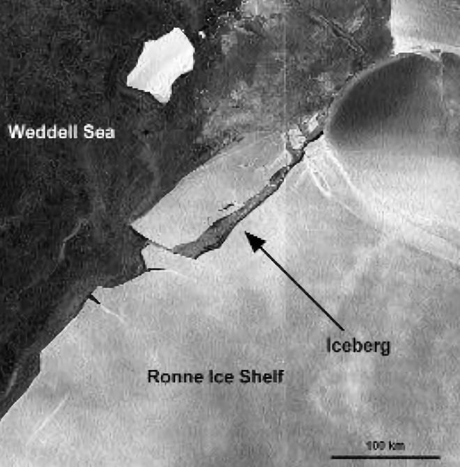 GoPro giúp các nhà khoa học tìm ra 12 loài động vật chưa từng được biết đến dưới lớp băng ở Nam Cực - ảnh 10