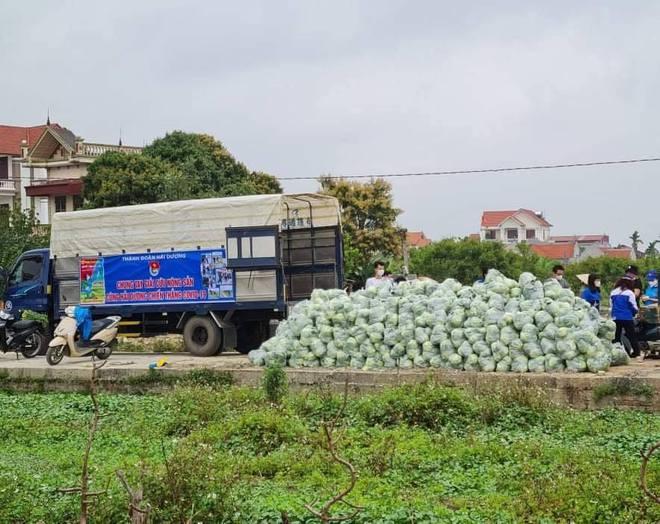 Vợ chồng Tuấn Hưng giải cứu 8 tấn nông sản cho bà con tỉnh Hải Dương gặp khó khăn giữa dịch Covid-19 - ảnh 4
