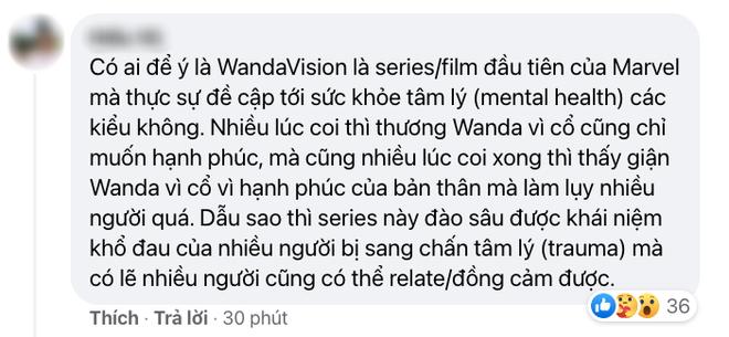 Netizen Việt bùng nổ vì WandaVision tập 8: Cảm động muốn khóc, tình tiết chấn động không thể ngờ! - ảnh 13