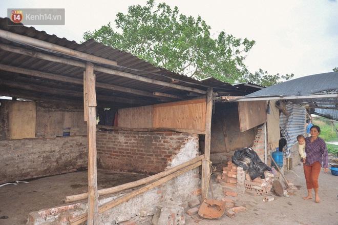 """Người mẹ sinh 14 đứa con ở Hà Nội, 3 đứa vướng vào lao lý: """"Cuộc đời này tôi chưa thấy ai khổ như mình"""" - Ảnh 5."""