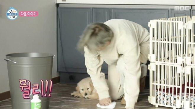 Tỷ phú Penthouse khoe mặt mộc trên show thực tế, gây chú ý với hình ảnh con sen cho cún cưng - Ảnh 13.