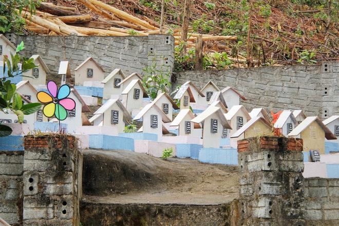 Đà Nẵng: Đình chỉ một nghĩa trang thai nhi hoạt động thiện nguyện - ảnh 2