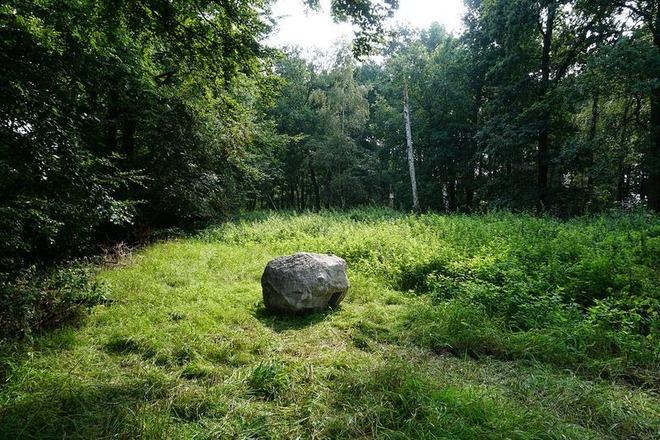 Bí ẩn tảng đá cứ đốt nóng là phát sóng wifi - ảnh 2