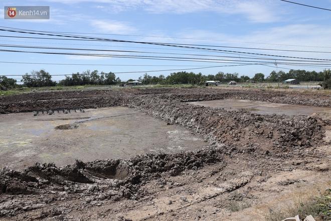 Người miền Tây bên những cánh đồng nứt toác vì hạn mặn: Lúa trồng xuống là chết, nước sông mặn đắng cả rồi! - ảnh 10