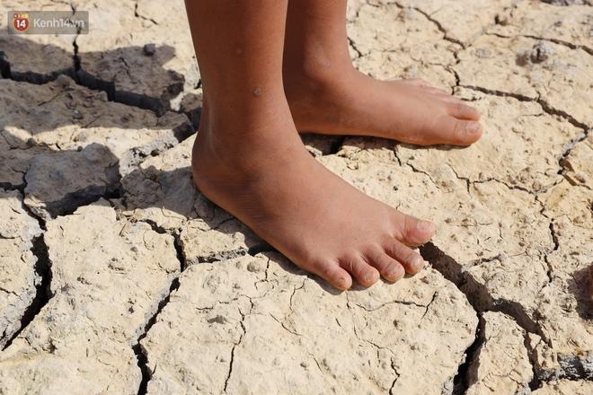 Người miền Tây bên những cánh đồng nứt toác vì hạn mặn: Lúa trồng xuống là chết, nước sông mặn đắng cả rồi! - ảnh 3