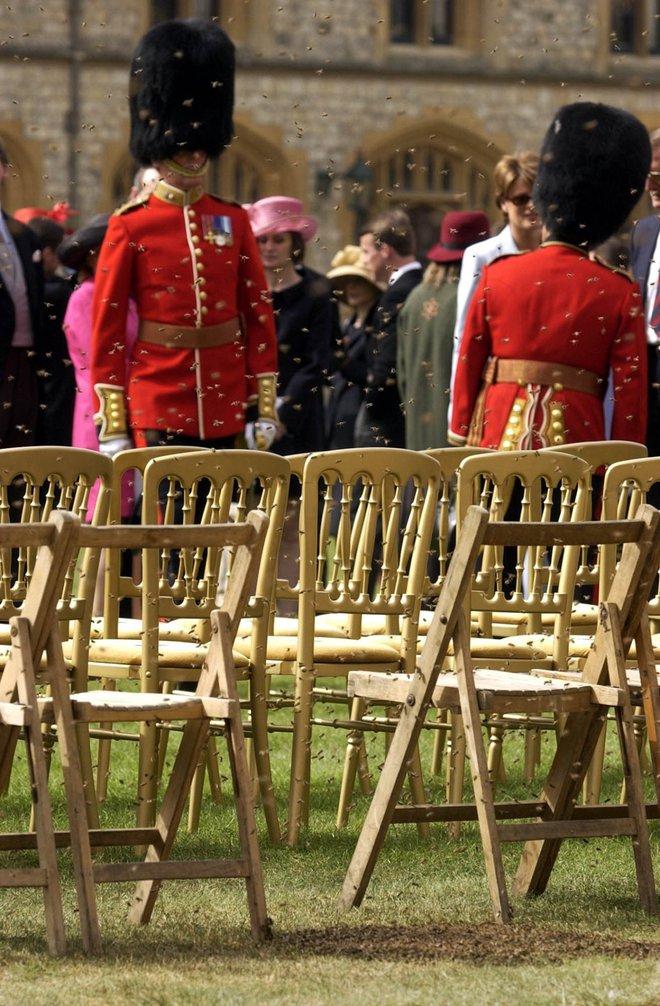 Câu chuyện phía sau bức ảnh cười khúc khích của cố Hoàng thân Philip và Nữ hoàng Anh: Ngôn tình hoá ra lại bình dị đến vậy! - ảnh 2