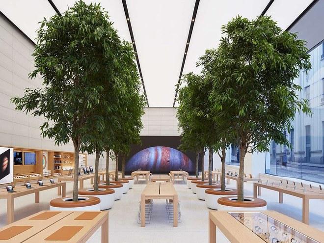 Ngắm những Apple Store đẹp nhất thế giới, khi nào Việt Nam mới có để check-in? - ảnh 5