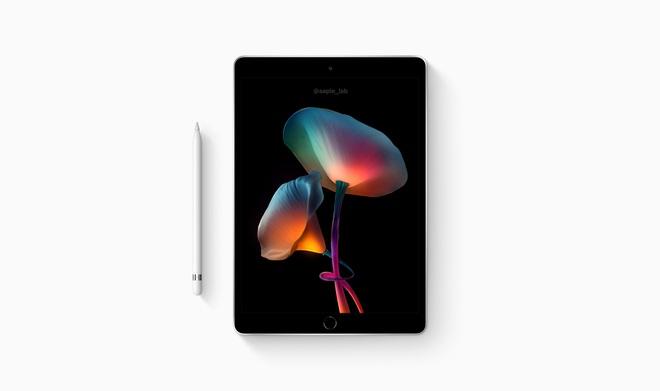 iPad Pro và iPad mini lộ ảnh concept đẹp lung linh trước giờ ra mắt - ảnh 6