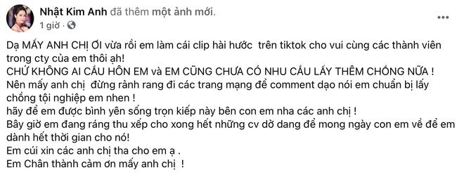 Nhật Kim Anh chính thức lên tiếng về chuyện tái hôn với TiTi (HKT) - ảnh 1