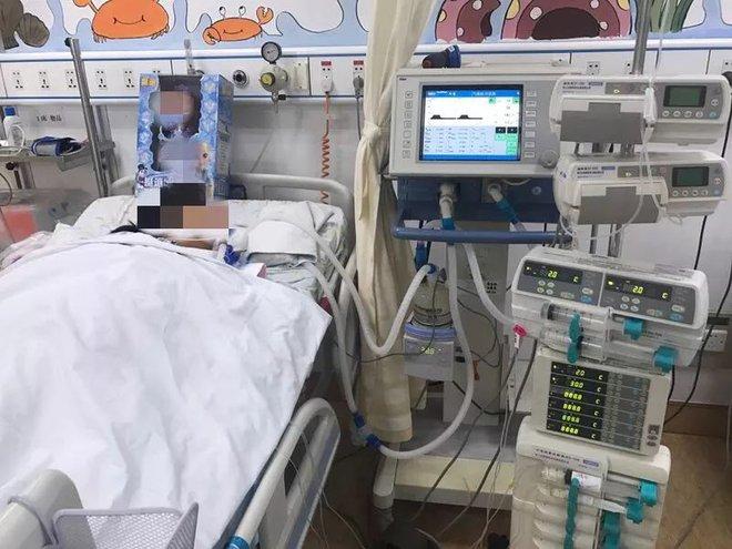 Bé 4 tuổi bị suy đa tạng vì ăn 1 thanh mía mua ven đường: Bác sĩ cảnh báo loại mía tuyệt đối không đụng tới - ảnh 1