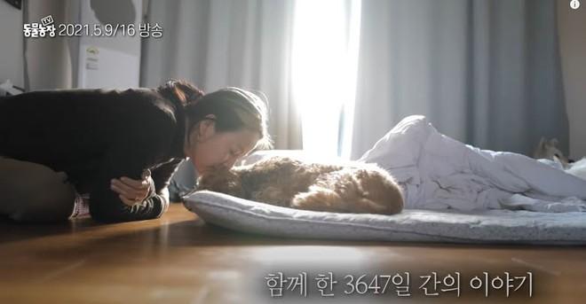 Cuối cùng Lee Hyori hé lộ lý do chuyển về ở ẩn tại đảo Jeju, hóa ra không phải do chồng mà là vì nhân vật đặc biệt này? - ảnh 2