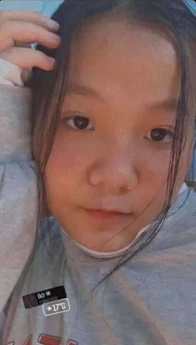 Tìm kiếm nữ sinh lớp 7 ở Hà Nội mất tích nhiều ngày - ảnh 3