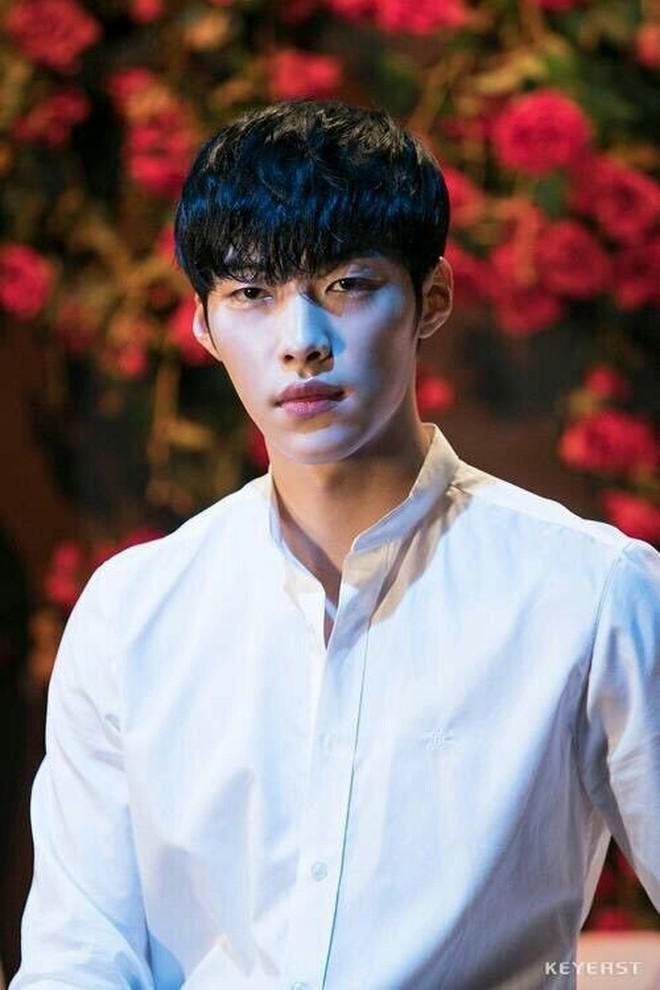 Sao Hàn lên chức CEO: Tài tử Bae Yong Joon thành ông hoàng đế chế, Ha Ji Won - Hyun Bin chưa sốc bằng nam idol Kang Daniel 23 tuổi - ảnh 4