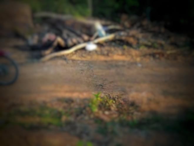 Hà Tĩnh: Phát hiện thi thể người đàn ông cháy đen dưới chân núi - ảnh 1