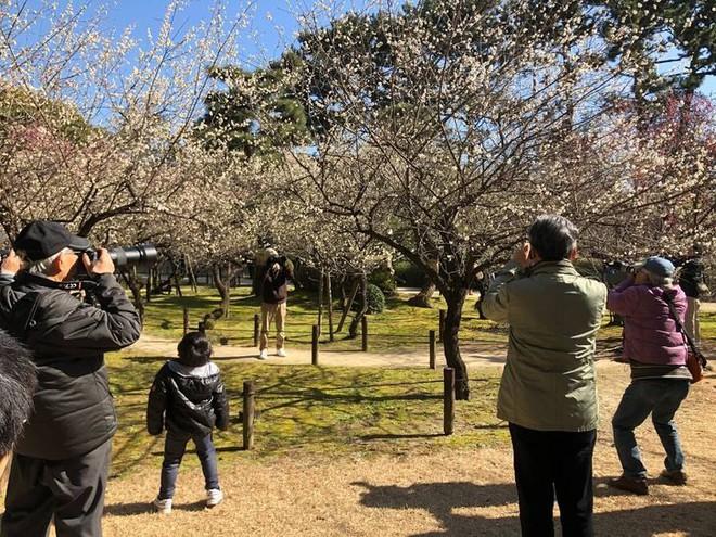 22 hình ảnh đậm đặc chất Nhật Bản, người bản địa xem xong còn phải gật gù chuẩn luôn quê mình - ảnh 14