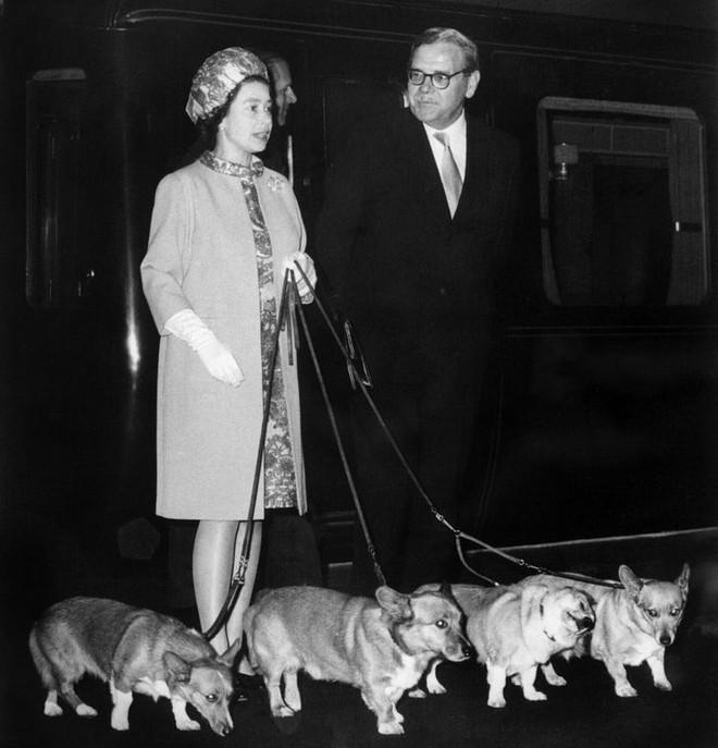 9 điều Nữ hoàng Anh Elizabeth II tuyệt đối không bao giờ làm: Vậy mới thấy Hoàng gia Anh nghiêm khắc đến mức nào - ảnh 8