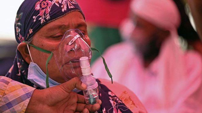 Thiếu hụt cơ sở y tế, chàng trai Ấn Độ trèo trên cây để cách ly sau khi biết mình nhiễm COVID-19 - ảnh 4