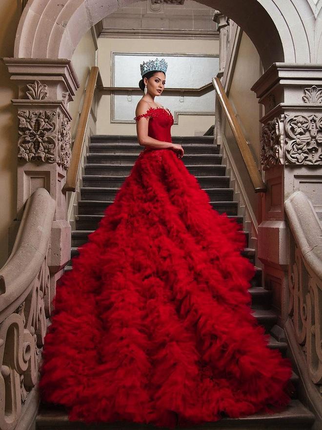 Tân Hoa hậu Miss Universe: Thạo 2 ngoại ngữ, từng bị bạn học nhốt trong phòng tắm - ảnh 6
