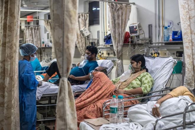 Thiếu hụt cơ sở y tế, chàng trai Ấn Độ trèo trên cây để cách ly sau khi biết mình nhiễm COVID-19 - ảnh 8