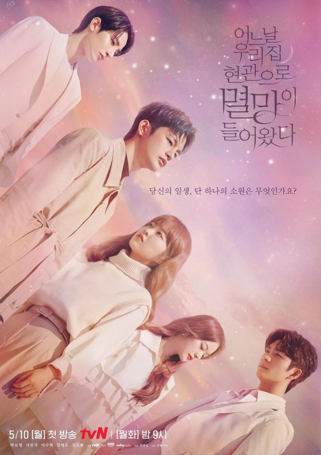 Bạn trai Park Bo Young gây sốt với nhan sắc chuẩn bad boy, netizen la ó hủy diệt tim em rồi - ảnh 11