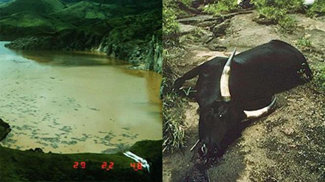 Chiếc hồ thảm sát: Chỉ sau 1 đêm mà cả nghìn người lẫn động vật xung quanh cái hồ này chết hàng loạt, chuyện gì đã xảy ra? - ảnh 1