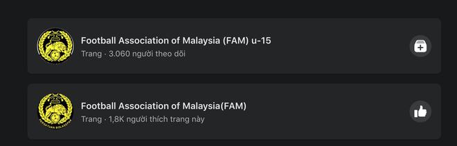 Fanpage chính thức của Hiệp hội Liên đoàn bóng đá Malaysia chặn IP của người dùng Việt - ảnh 6