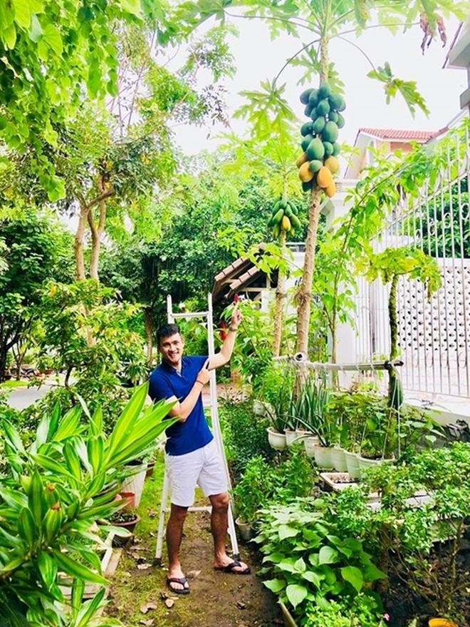 Sống giữa khu nhà giàu mà Thuỷ Tiên vẫn có vườn rau rộng 100m2: Không cần đi chợ vì quá sum suê, rau gì cũng có! - Ảnh 2.