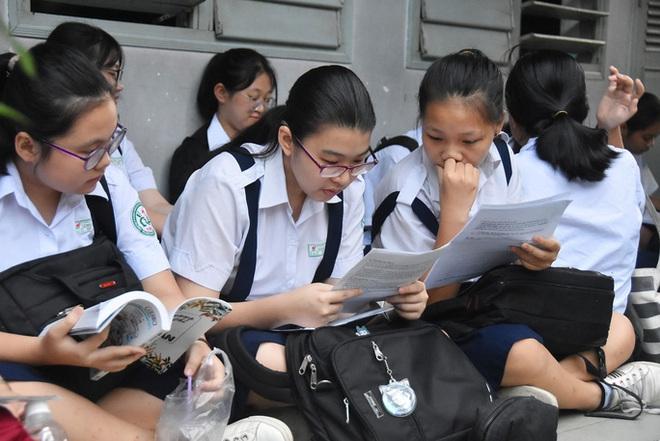 Tìm phương án cho kỳ tuyển sinh lớp 10 tại TP.HCM - ảnh 1