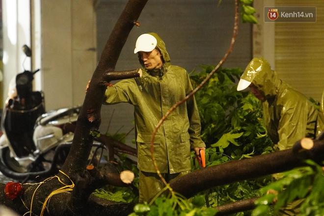 Hàng loạt cây xanh gãy đổ khắp đường phố Hà Nội sau cơn mưa giông tầm tã - Ảnh 7.