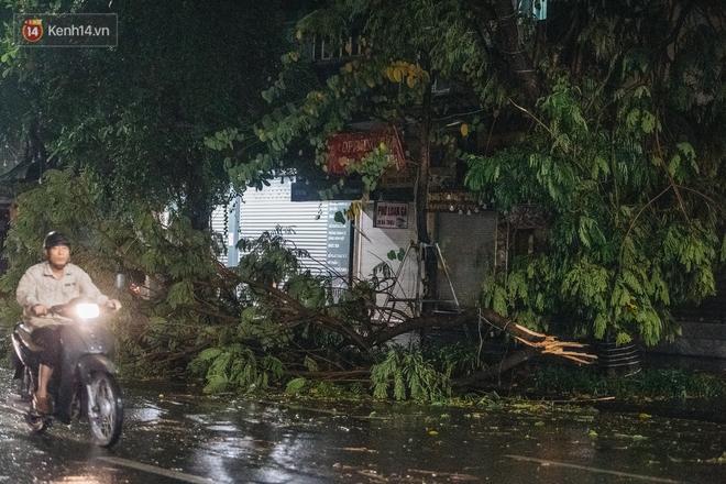 Chùm ảnh Hà Nội sau cơn mưa trắng trời: Cây đổ khắp phố phường, mất điện, người dân không kịp trở tay - ảnh 11