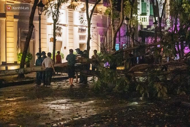 Chùm ảnh Hà Nội sau cơn mưa trắng trời: Cây đổ khắp phố phường, mất điện, người dân không kịp trở tay - ảnh 14