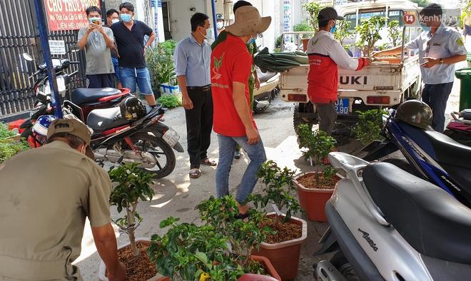 Góc cưng xỉu: Người dân Sài Gòn trong khu cách ly thi trồng cây táo, chờ táo nở hoa - Ảnh 1.