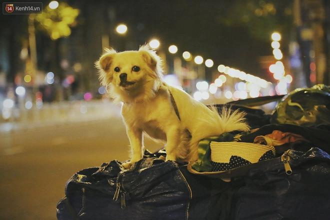 """Người vô gia cư lay lắt trong đêm đầu Sài Gòn giãn cách: """"Con không có nhà, tối con ra Cầu Mống mà ngủ"""" - Ảnh 15."""